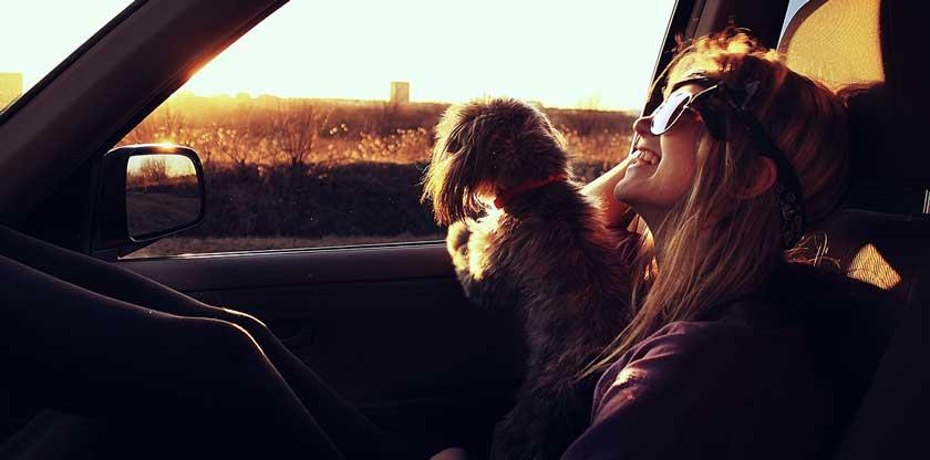 chica con mascota en auto